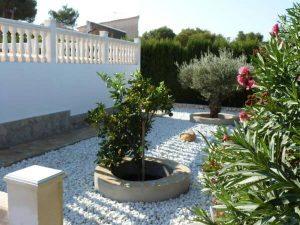 garden after remodeling